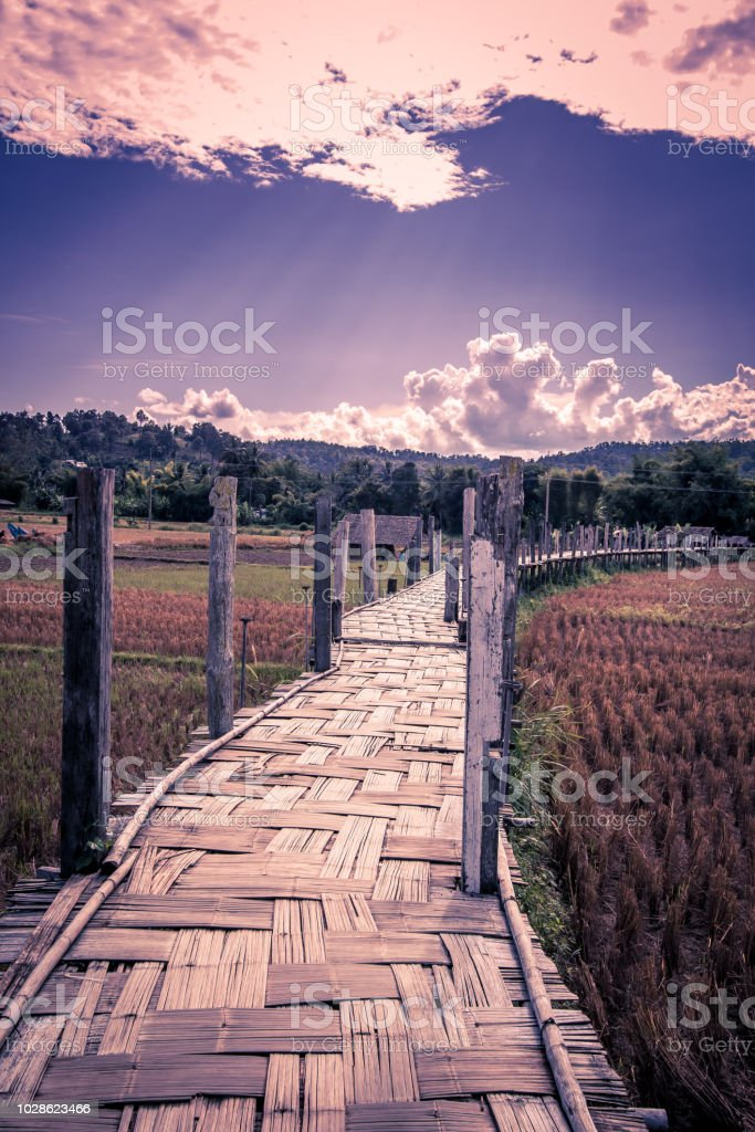 Su Tong Pae Bridge,the bamboo bridge of faith across the rice fields in Mae Hong Son province,Northern Thailand. stock photo