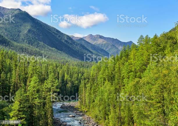 Photo of Subalpine coniferous taiga in Siberian mountains