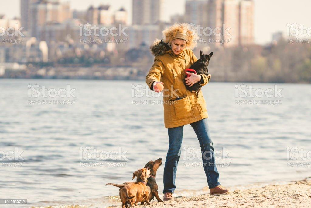 Subject Lot Pets Dog Lover On Walk Adult Old Elderly
