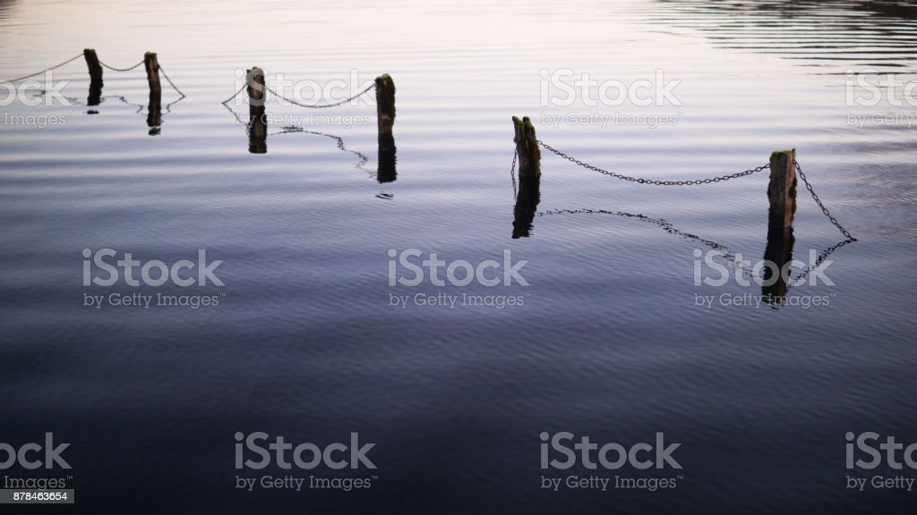 Submerged Fence 1 royalty-free stock photo
