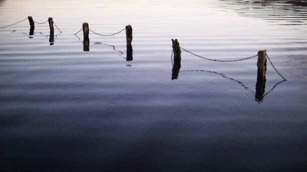 Submerged Fence 1 stock photo