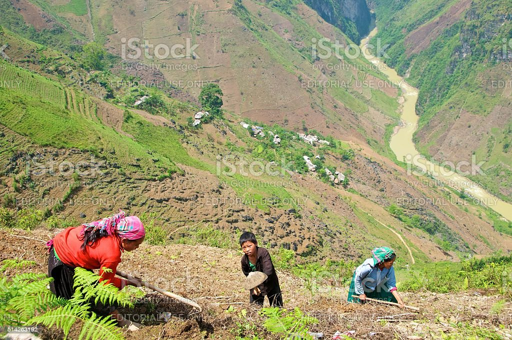 Subsistence farming in North Vietnam stock photo
