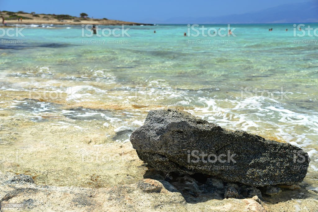 Subtropics - sandy beach royalty-free stock photo
