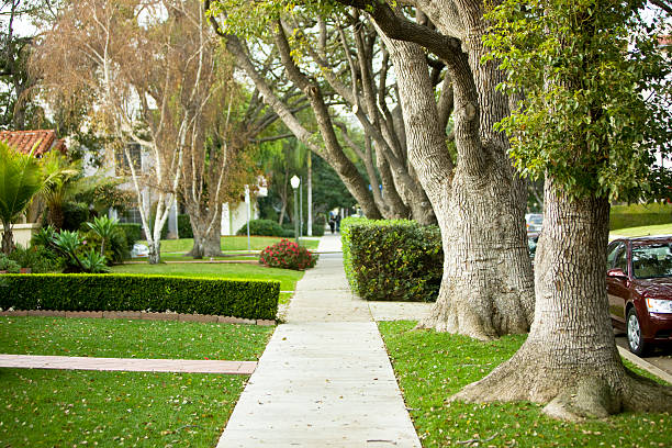 Suburb Suburb, canon 1Ds mark III westwood neighborhood los angeles stock pictures, royalty-free photos & images
