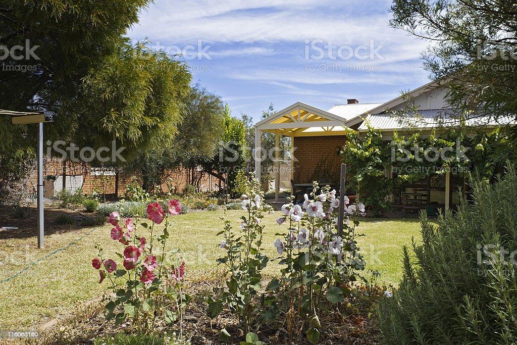 Suburban Australian backyard - high Summer royalty-free stock photo