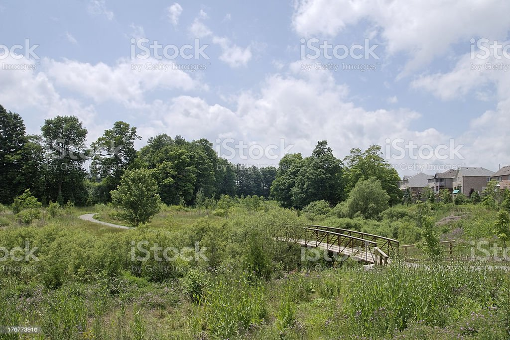 Suburban landscape on a summer day royalty-free stock photo