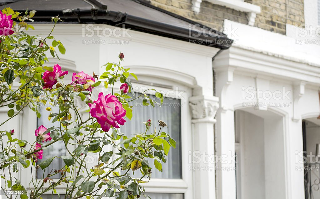 suburban townhouses and flower garden royalty-free stock photo
