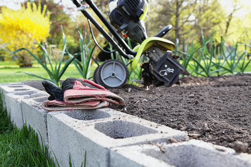 A suburban garden in early spring has been tilled and is ready for planting. Selective focus on well-worn work gloves. -- -- -- Related images: [url=file_closeup.php?id=15621923][img]file_thumbview_approve.php?size=1&id=15621923[/img][/url] [url=file_closeup.php?id=25102165][img]file_thumbview_approve.php?size=1&id=25102165[/img][/url] [url=file_closeup.php?id=22675751][img]file_thumbview_approve.php?size=1&id=22675751[/img][/url] [url=file_closeup.php?id=16979459][img]file_thumbview_approve.php?size=1&id=16979459[/img][/url] [url=file_closeup.php?id=19518117][img]file_thumbview_approve.php?size=1&id=19518117[/img][/url] [url=file_closeup.php?id=18756011][img]file_thumbview_approve.php?size=1&id=18756011[/img][/url] [url=file_closeup.php?id=16974291][img]file_thumbview_approve.php?size=1&id=16974291[/img][/url] [url=file_closeup.php?id=8586735][img]file_thumbview_approve.php?size=1&id=8586735[/img][/url] [url=file_closeup.php?id=9605323][img]file_thumbview_approve.php?size=1&id=9605323[/img][/url] [url=file_closeup.php?id=13823261][img]file_thumbview_approve.php?size=1&id=13823261[/img][/url] [url=file_closeup.php?id=15620909][img]file_thumbview_approve.php?size=1&id=15620909[/img][/url] [url=file_closeup.php?id=16166588][img]file_thumbview_approve.php?size=1&id=16166588[/img][/url]