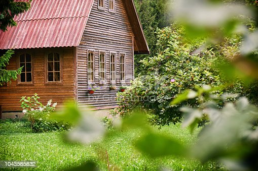 Sububrban wooden house with a red roof in the green garden at russian countryside in summer. Russian dacha.