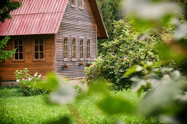 Suburban wooden house with a red roof in the green garden at russian countryside in summer Sububrban wooden house with a red roof in the green garden at russian countryside in summer. Russian dacha. russian dacha stock pictures, royalty-free photos & images