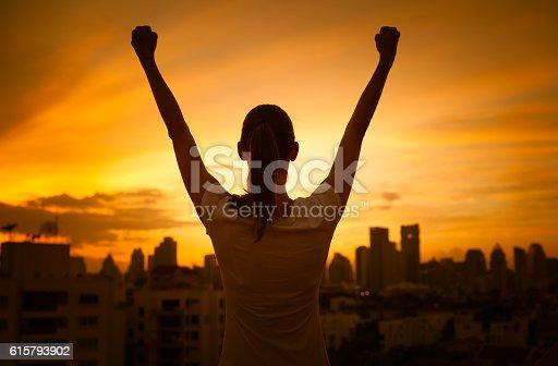 istock Success and life achievement concept 615793902
