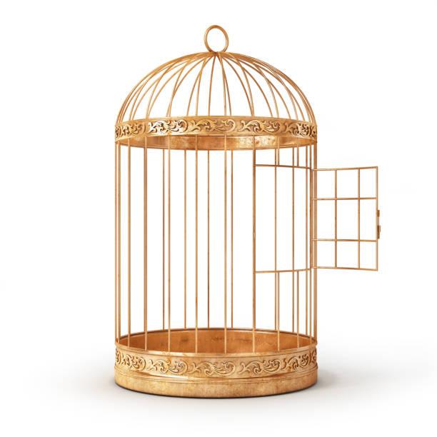 Erfolgskonzept. Öffnen des Vogels Zelle isoliert auf weißem Hintergrund. 3D illustration – Foto