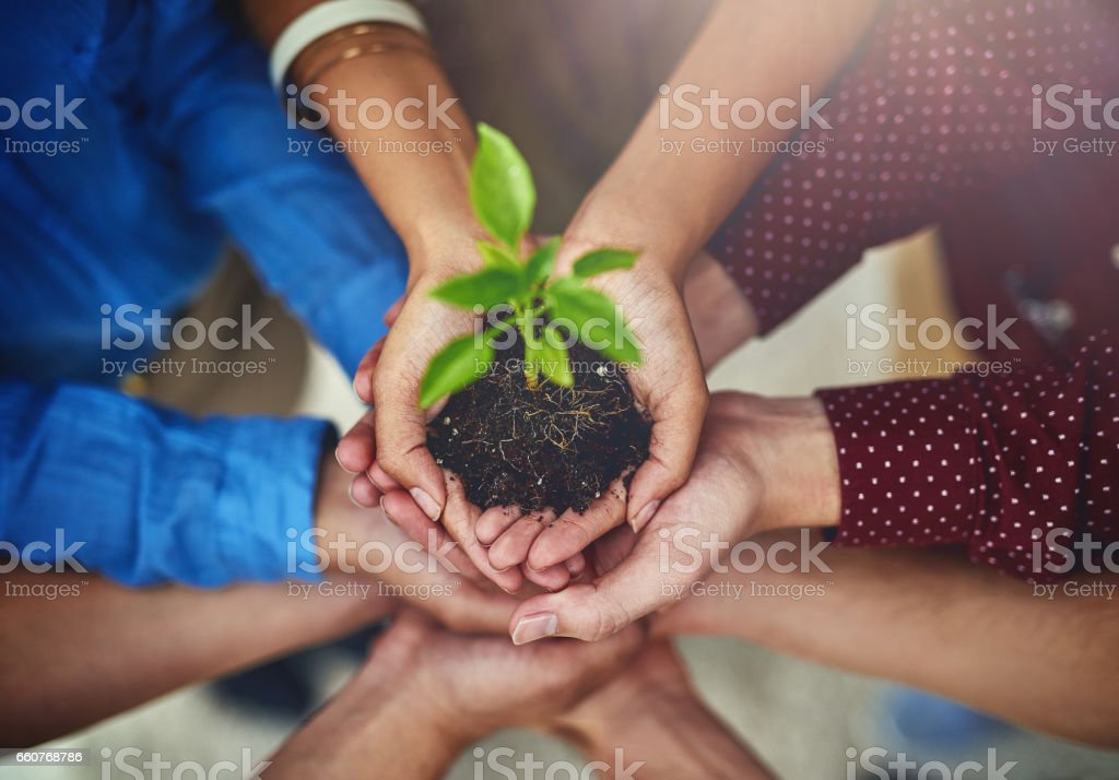 Success means helping each other grow stock photo