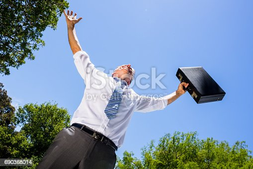 istock Successful busienssman carrying briefcase against sky 690368014