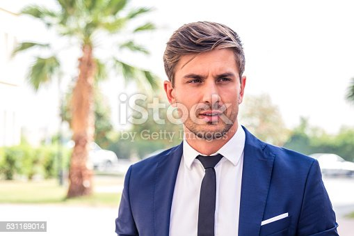 istock Successful Businessman 531169014