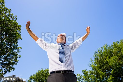 istock Successful businessman with arms outstretched 690367850