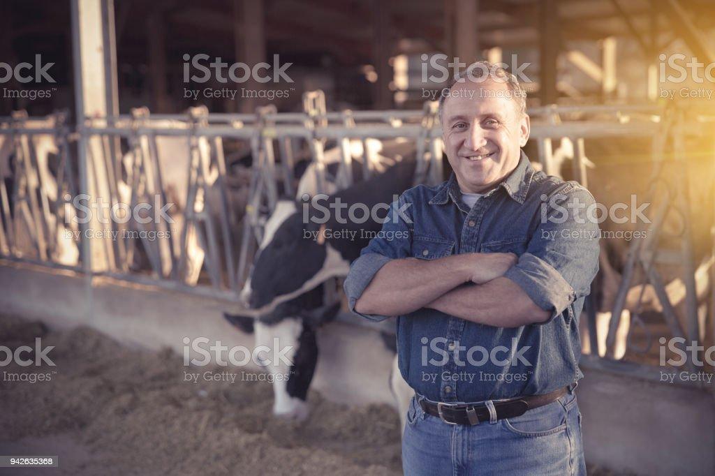 Bem sucedido fazendeiro masculino no estábulo - foto de acervo