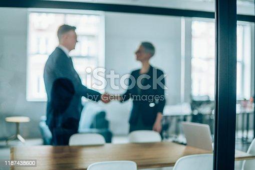 647200468 istock photo Successful partnership 1187438600