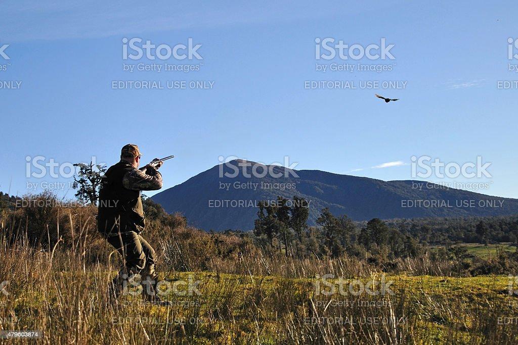 Successful pheasant hunter stock photo