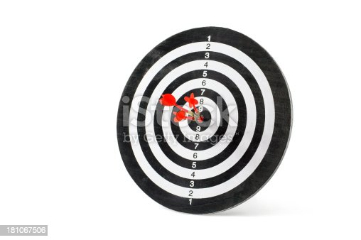 919544754 istock photo Successful Target 181067506