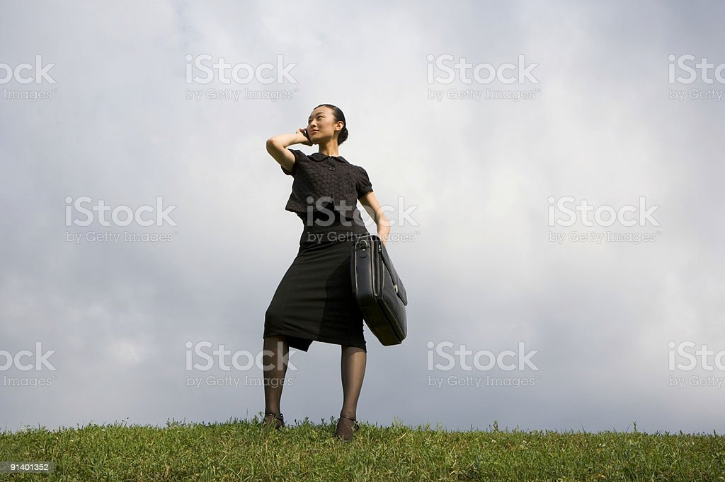 Successful Woman royalty-free stock photo