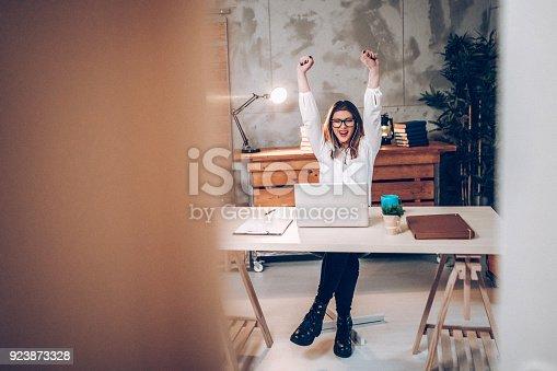 Successfull business women