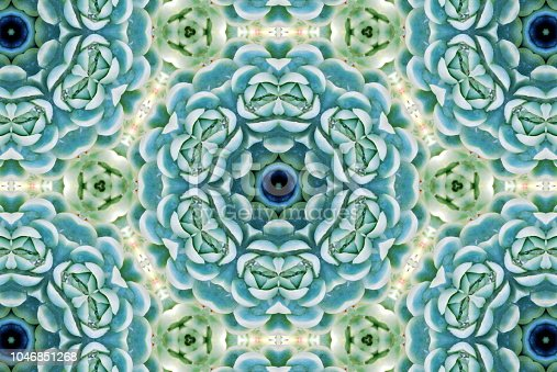 Lush Green Succulent Mandala for Modern Mindfulness