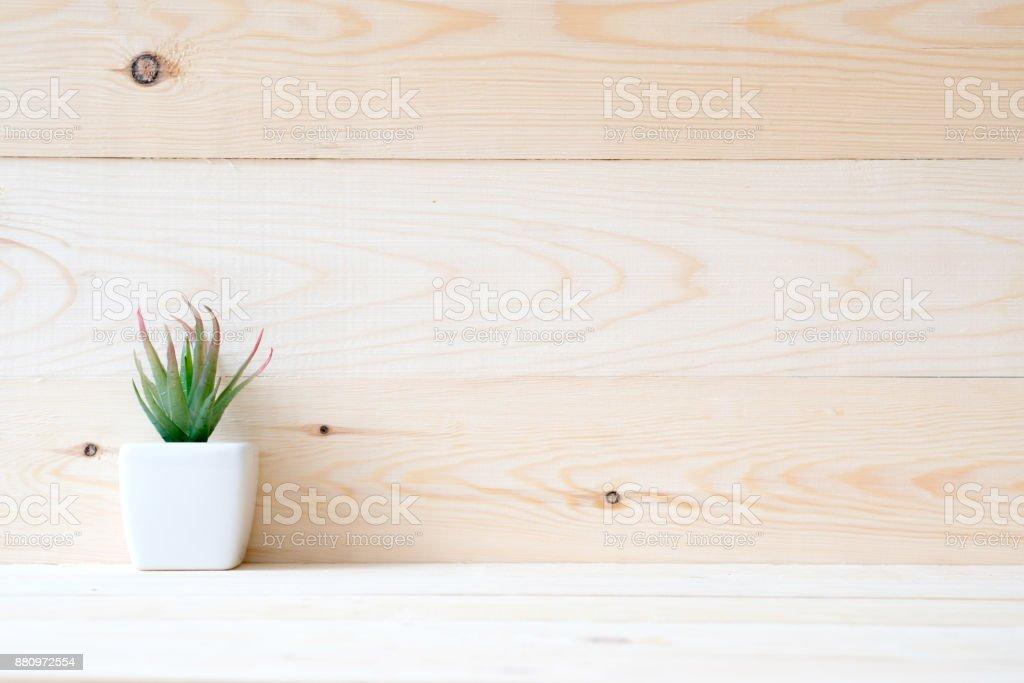 Sukkulente in einen kleinen Topf setzen auf Holztisch – Foto