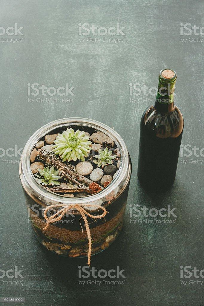 Succulent plant Terrarium & Wine Bottle stock photo