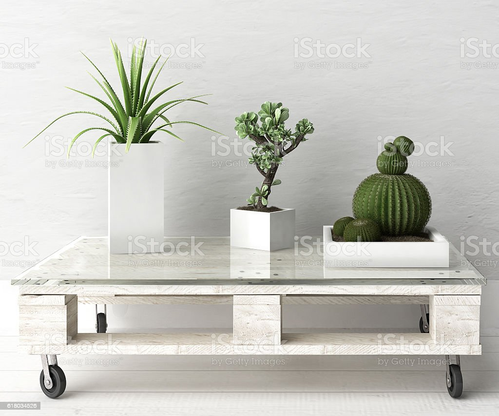 Succulent plants on pallet coffee table stock photo