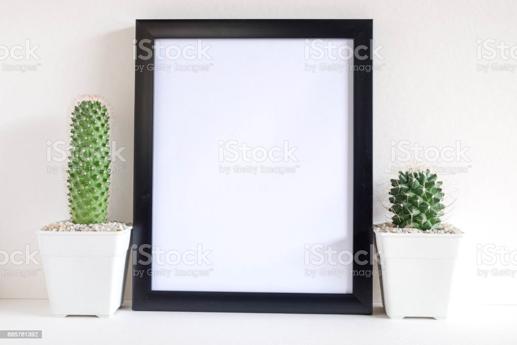 succulents or cactus in concrete pots over white background on the shelf and mock up frame photo foto stock royalty-free