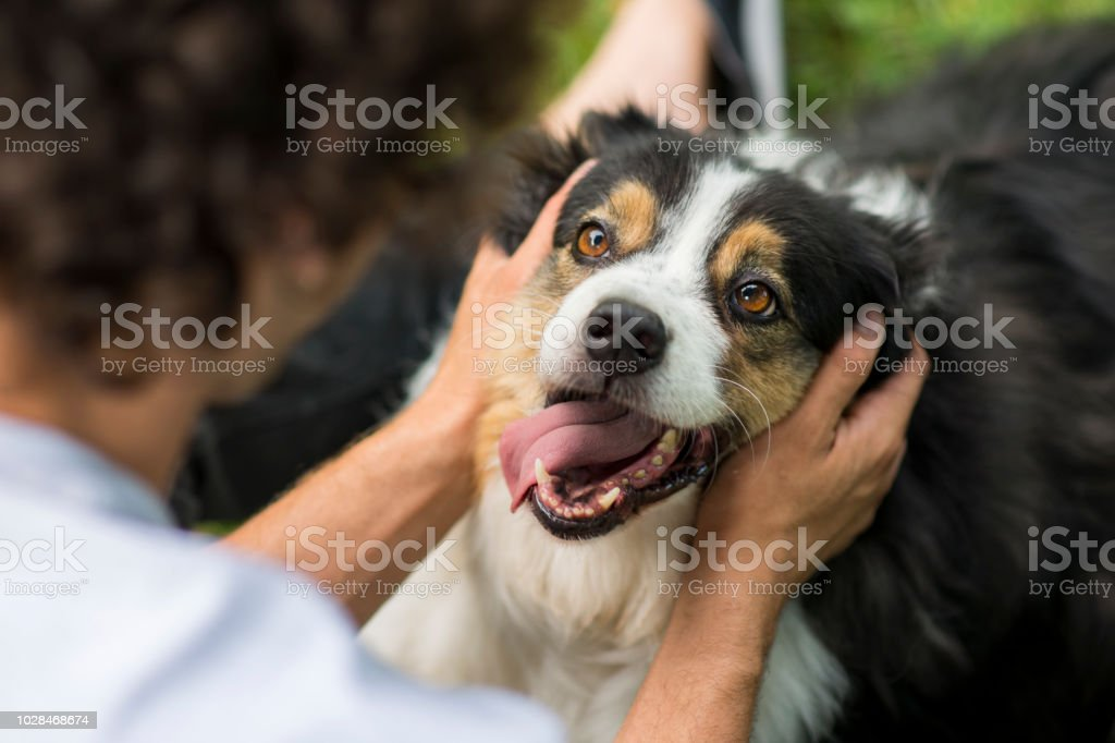 Such Happiness stock photo
