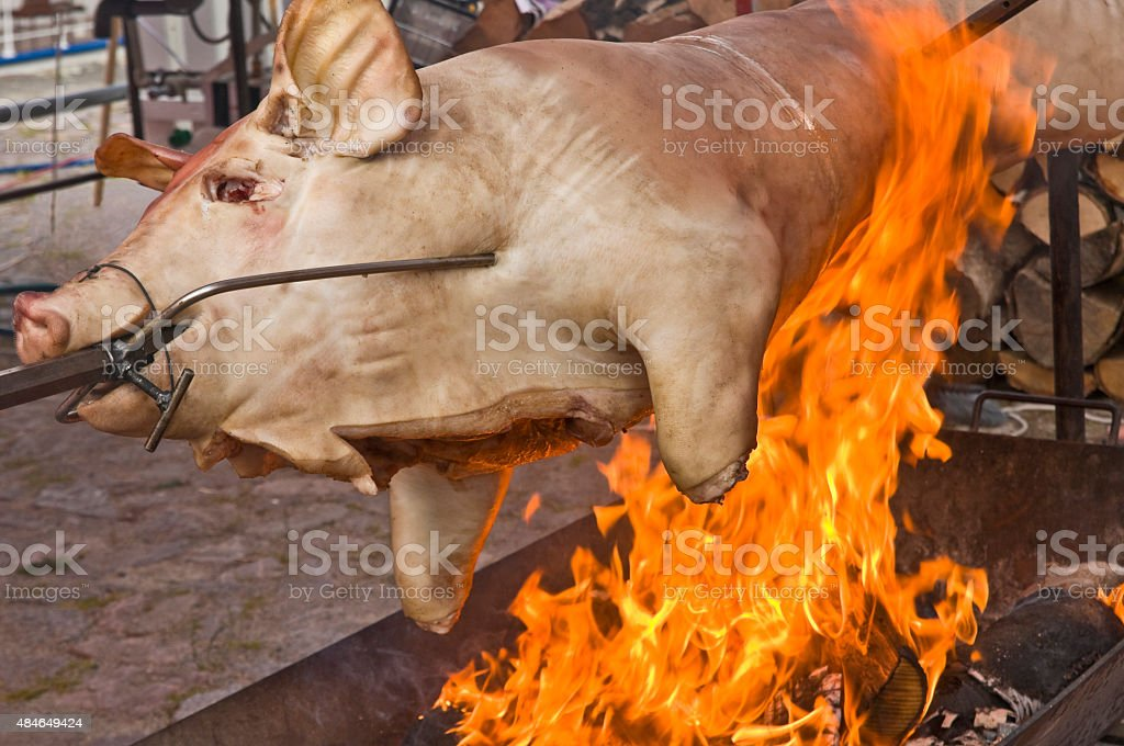 Suckling pig on a grill with wood fire stock photo