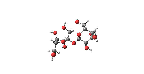 Sucrose molecular structure isolated on white Sucrose is a common, naturally occurring carbohydrate found in many plants and plant parts carbohydrate biological molecule stock pictures, royalty-free photos & images