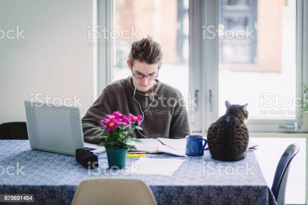 Sudent doing home work at a table with a laptop and a cat beside him picture id675691454?b=1&k=6&m=675691454&s=612x612&h=puo8nhai4nedbm0qjxxcexzh8hrx8imw4x6ecotzgoo=