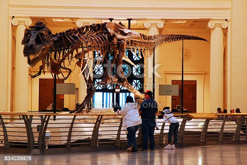 istock Sue at the Field Museum 834039928