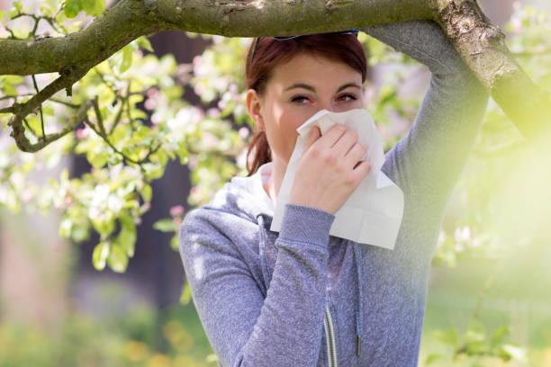 pollenallergie leiden - heuschnupfen stock-fotos und bilder