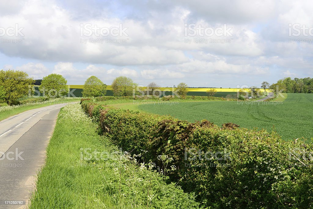 Suffolk countryside. stock photo