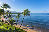 Beach and palms trees in the morning atSugar Beach Kihei Maui Hawaii USA