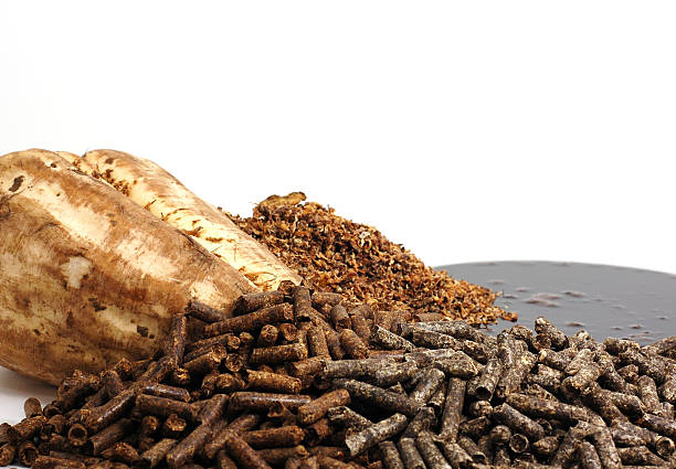 Sugar Beet ByProducts stock photo