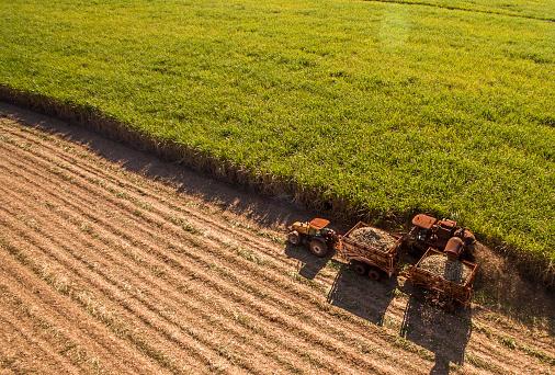 甘蔗 Hasvest 種植園空中 照片檔及更多 動作 照片