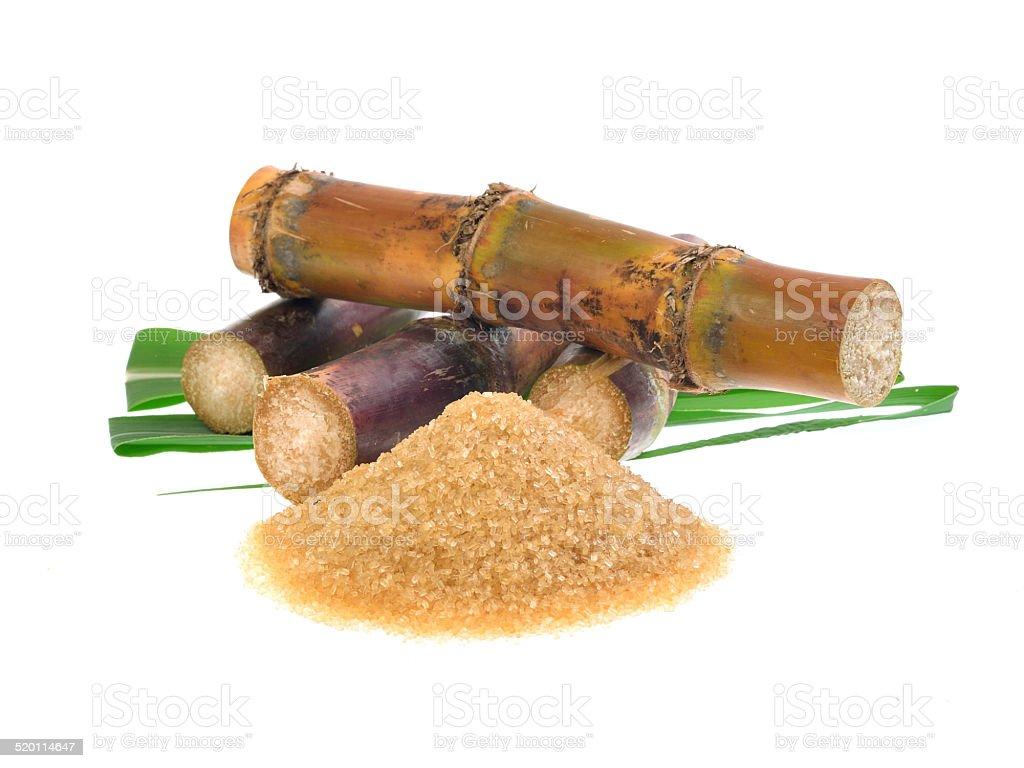 Caña de azúcar aislado sobre fondo blanco - Foto de stock de Caña de azúcar libre de derechos
