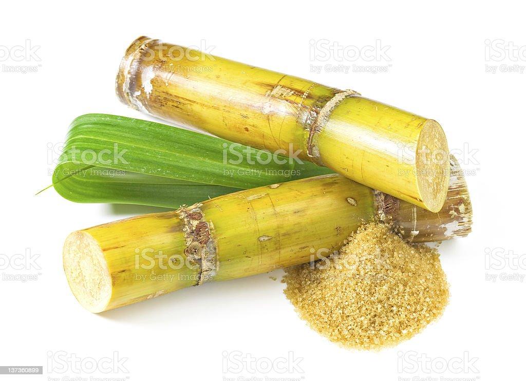 Sugar Cane royalty-free stock photo
