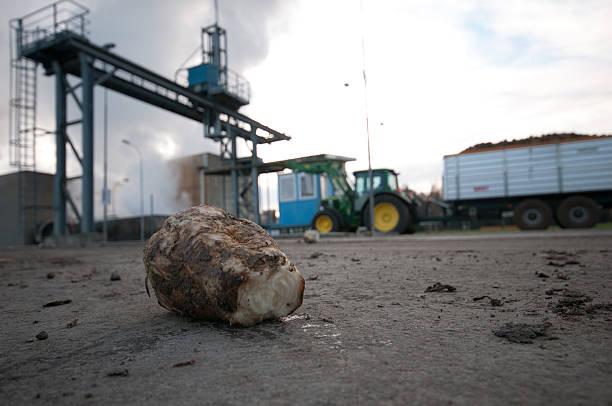 sugar fabriken frauenfeld - patrick hutter stock-fotos und bilder