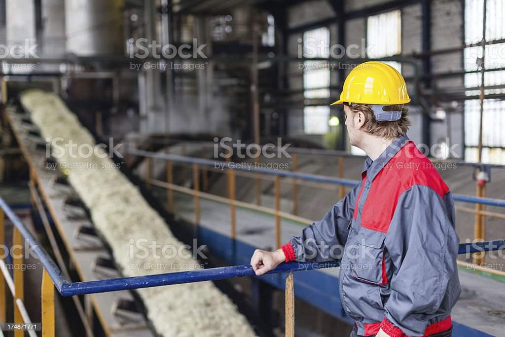 Sugar factory royalty-free stock photo