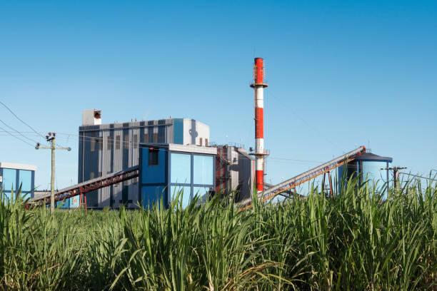 설탕 제분기, 사탕수수 필드 - 제조 공장 뉴스 사진 이미지