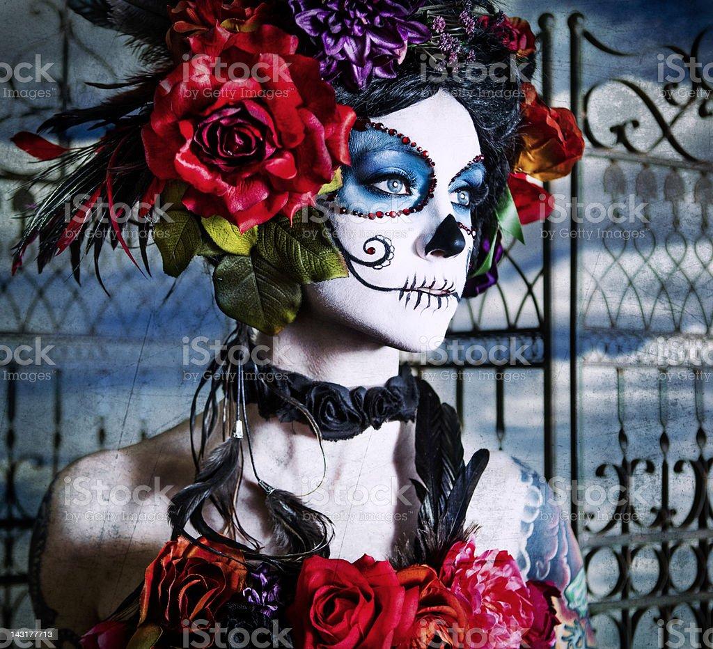 Sugar Skull Series stock photo