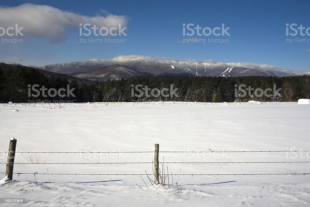Sugarbush in the distance stock photo