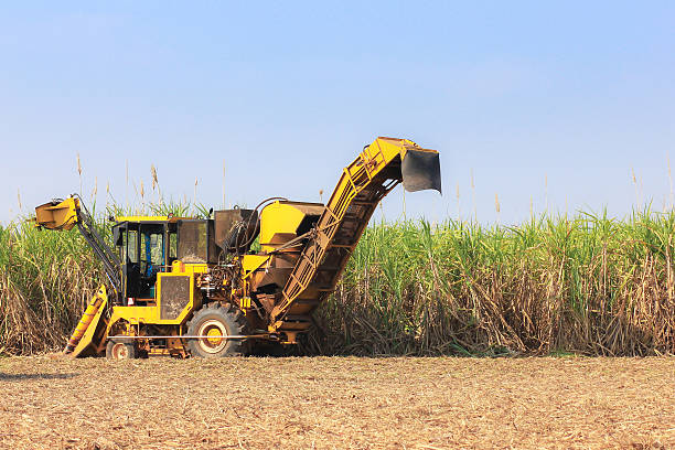 Sugarcane harvester machine Sugarcane harvester machine sugar cane stock pictures, royalty-free photos & images