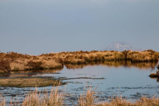 Sugarloaf Mountain from Djouce Mountain, Wicklow, Ireland stock photo